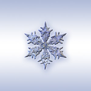 ColdSnap! Frost Alarm For PC