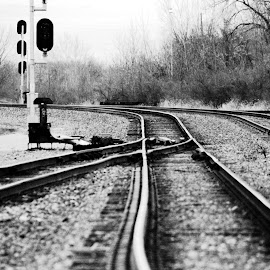 Homeward by Charles Shope - Travel Locations Railway ( black and white, outdoor, train, switch, travel, tracks )