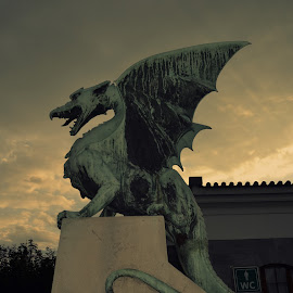 Dragon Bridge by Velibor Manić - Buildings & Architecture Statues & Monuments ( ljubljana, zmaj )