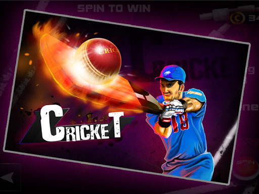 Cricket 3D - screenshot