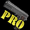 3D Weapons Pro