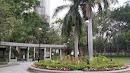 Tin Shui Wai Park Palm Tree Sitting Area
