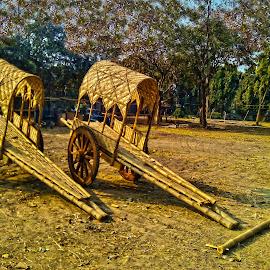 Hand Carts by Kamal Mallick - Instagram & Mobile Other ( transport )
