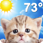 App Weather Kitty APK for Kindle