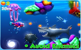 Screenshot of Magic Coral