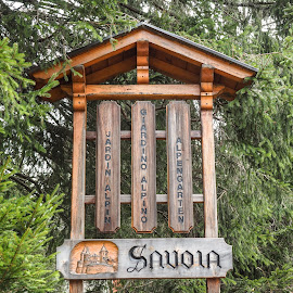 Savoia sign by Mauro Amoroso - Artistic Objects Antiques ( gressoney, sign, aosta, wood, nature, savoia )