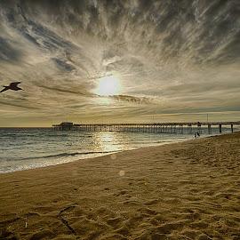 Balboa Pier by Jose Matutina - Landscapes Beaches ( orange county, california, balboa pier, newport beach, sea, ocean )