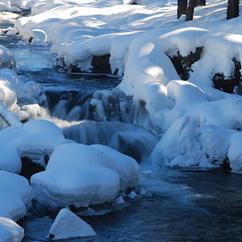 Flowing through the snow by Aaron Thibodeau - Novices Only Landscapes ( water, stream, california, ice, tahoe, snow )