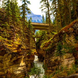 Banff National Park by Joseph Law - Landscapes Caves & Formations ( brigge, stream, rocky mountains, rock formation, natrional park, banff )