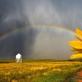 Rain A Little Sunshine. by Roger Sullins - Digital Art Places ( hope )