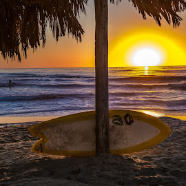 Island in the Sun by Karina Irene - Sports & Fitness Surfing ( #sandiego, #windnsea, #surfing )