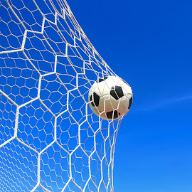 soccer ball in net  by Taweesak Jaroensin - Sports & Fitness Soccer/Association football ( netting, kick, single, lawn, ground, sporting, line, equipment, round, net, movement, leauge, crash, black, activity, soccer, victory, playground, ball, exercising, moving, symbol, grass, green, play, white, sport, turf, leisure, fun, game, win, league, goal, entertainment, scoring, gate, field, recreational, season, football, shoot, background, outdoors, summer, success, competition, athletic )