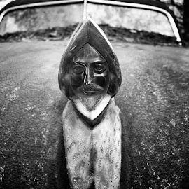 Hood Ornament by Blaine Pratt - Transportation Automobiles