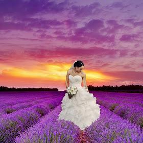 M:\Wedding Photography\- Pixoto\aa To Submit Today\SarahLavender.jpg