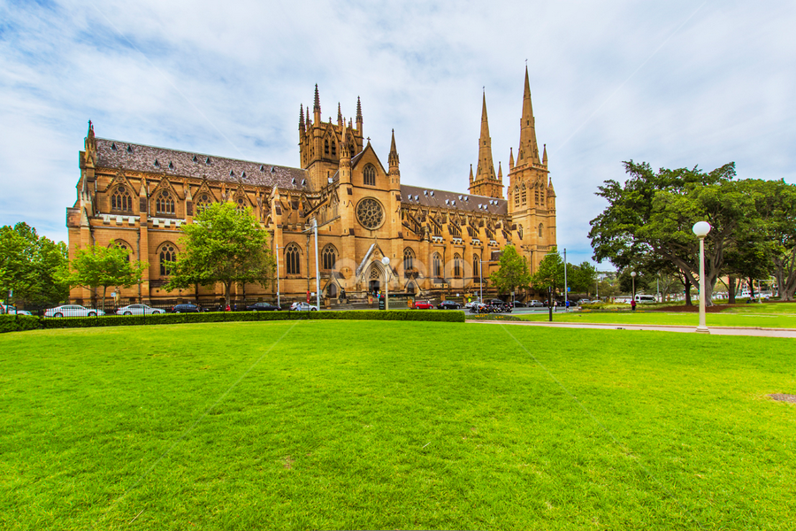 St Mary's Cathedral, Hyde park by Gayan Wijesinghe - City,  Street & Park  City Parks ( sky, spring, sydney, hyde park, green, blue, grass, clear, australia, park, st mary's cathedral )