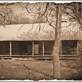Still In Good Shape by Brenda Hooper - Buildings & Architecture Homes ( home, gaddo gap, abandonded, montgomery county, breeze way, house, arkansas,  )