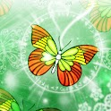 Amazing Butterfly theme480x800 icon