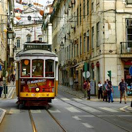 Tram by Khaled Ibrahim - City,  Street & Park  Street Scenes