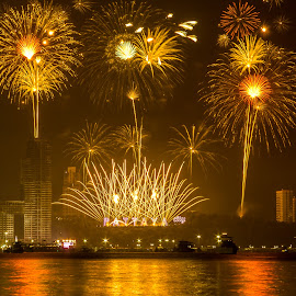 Count down to 2015 by Ariya Namwong - News & Events World Events ( countdown, frieworks, thailand, penny, newyear, pattaya )