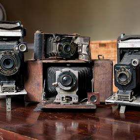 Four Kodaks.jpg