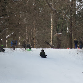 On the Sled by Marcia Taylor - Novices Only Street & Candid (  )