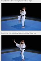 Screenshot of TKD Tutor White Belt