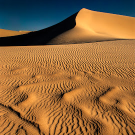 Sahara Dunes by Damjan Voglar - Landscapes Travel