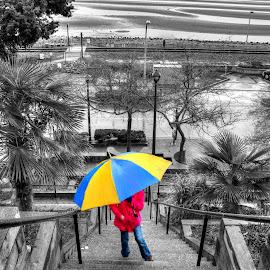 Umbrella Bright by Ernie Kasper - Digital Art People ( railing, stairs, black and white, digital art, shoreline, palm trees, ocean, artwork, oil )