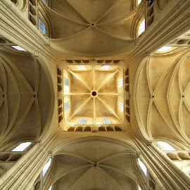 Laôn Cathedral by Timothy Carney - Buildings & Architecture Places of Worship ( crossing, tower, gothic, france, cathedral, laon )