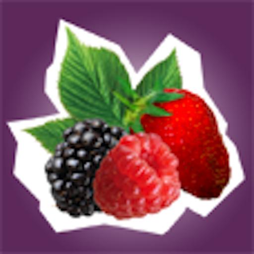 Oregon Berries LOGO-APP點子
