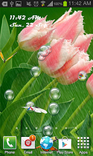 Tulips in Rain Livewallpaper - screenshot