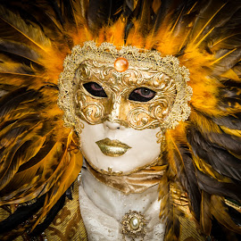 Venician Lion by Arti Fakts - News & Events World Events ( lion, carnival, mask, feathers, artifakts, king, feather, sun, disguised, venice, costume, venise, venezzia,  )