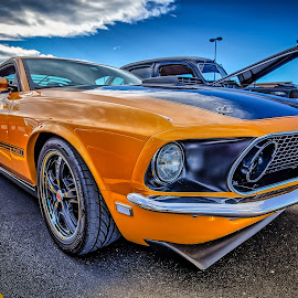 Gold Mustang by Ron Meyers - Transportation Automobiles