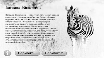 Screenshot of Zebra puzzle