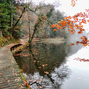 lake Trakoscan by Dunja Kolar - Landscapes Waterscapes ( lake trakoscan )