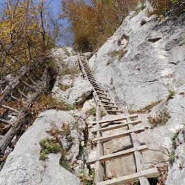 by Gabriel Dobrescu - Nature Up Close Rock & Stone
