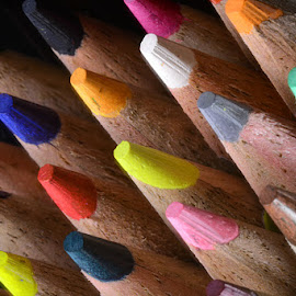 Colorful Timber by Rakesh Syal - Artistic Objects Education Objects