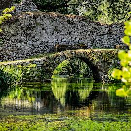 Giardino di Ninfa by Ivano Mancino - Landscapes Waterscapes ( giardino, giardino di ninfa, lazio, latina, ninfa, italy,  )