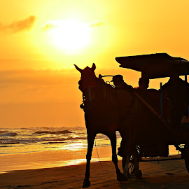 horse-drawn carriage by Yudi Dhaniwanto - Transportation Other ( silhouette the horse )
