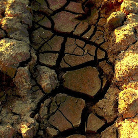 Cracked by Leigh Martin - Nature Up Close Sand ( mud sand dry cracked )