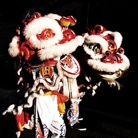 Lion Dance by Gabrielle Yap - People Musicians & Entertainers