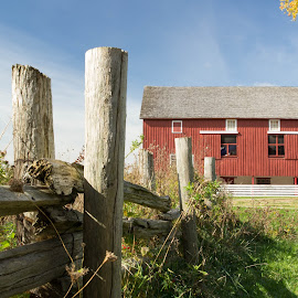 Red Barn by Linda Pickrell - Buildings & Architecture Other Exteriors ( farm, linda pickrell, fence, building, red, park, barn, bronte )