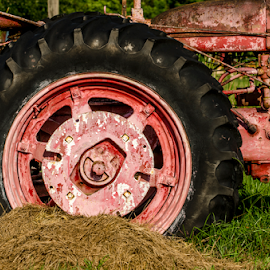 tractor tire by David Ubach - Artistic Objects Industrial Objects ( farm, red, wheel, farm equipment, equipment, tractor, antique )