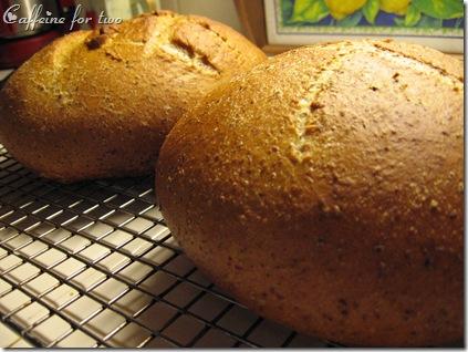 pane di segale (4)