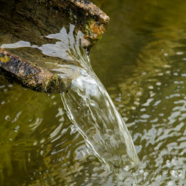 Clear Waters by John Cope - Nature Up Close Water ( relais villa d'assio, running water, water.fountain, clear water )