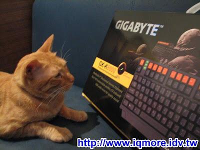 """技嘉(Gigabyte) GK-K8000 機械式電競鍵盤 """"正式版"""" 評測"""
