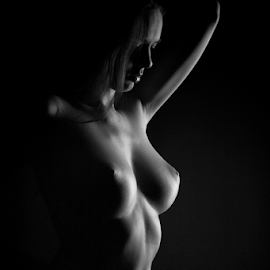 the body by Reto Heiz - Nudes & Boudoir Artistic Nude ( studio, nude, black and white, nikolart, lowkey )