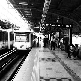Light Railway Train by Nann Photos - Transportation Trains ( railway, transport, train, transportation, trains,  )