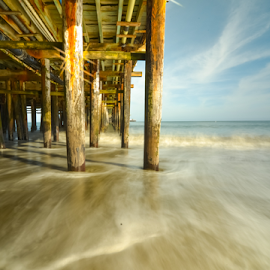Sun kissed wharf piling with surf by Kathy Dee - Buildings & Architecture Other Exteriors ( water, california, ocean, piling, coastal, coast, blurred, santa, cruz, shutter, slow, wharf, surf )