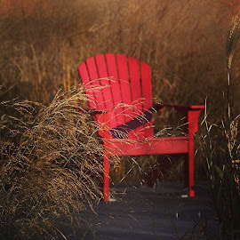 The red chair by Julie Ahmed - Artistic Objects Furniture ( hunter point, chair )